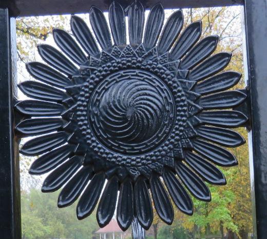 Sunflower_Chapelfield.jpg
