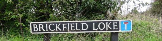 Brickfield Loke.jpg