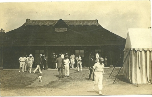Lakenham Cricket.jpg