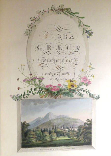 FloraGraeca.jpg