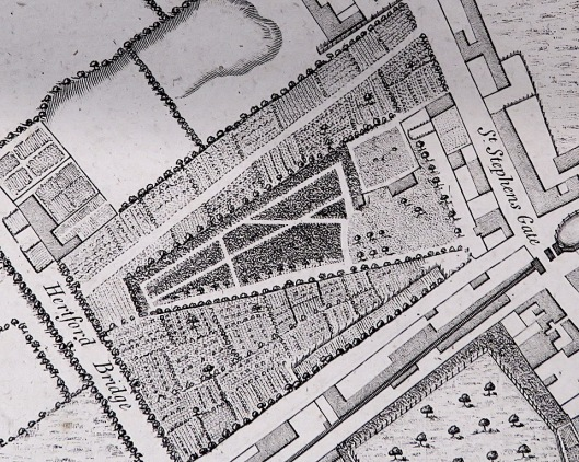c121284a19 Ranelagh Gardens from Anthony Hochstetter s Plan of 1789. Courtesy of  Norfolk Museums Service